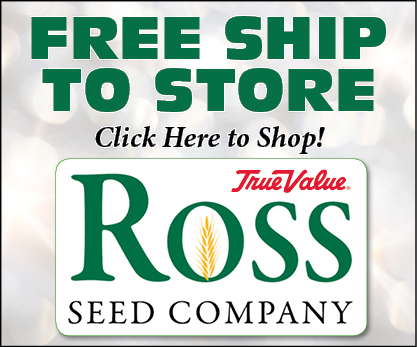 Ross Ship to store