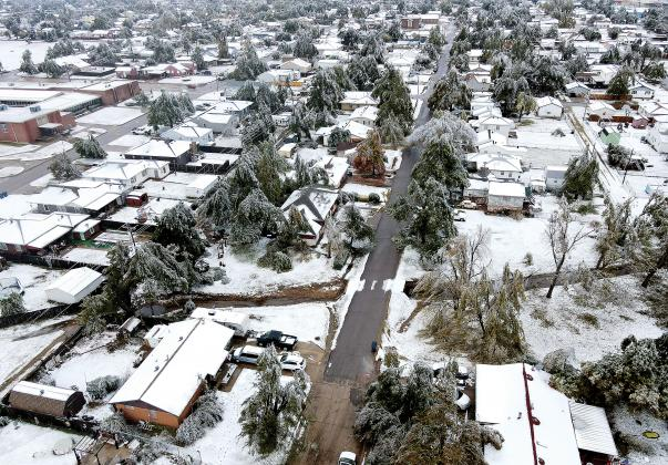 This aerial photo shows widespread damage to trees in the area around Hillcrest
