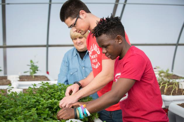 Dr. Julie Flegal-Smallwood works with students in the aquaponics lab