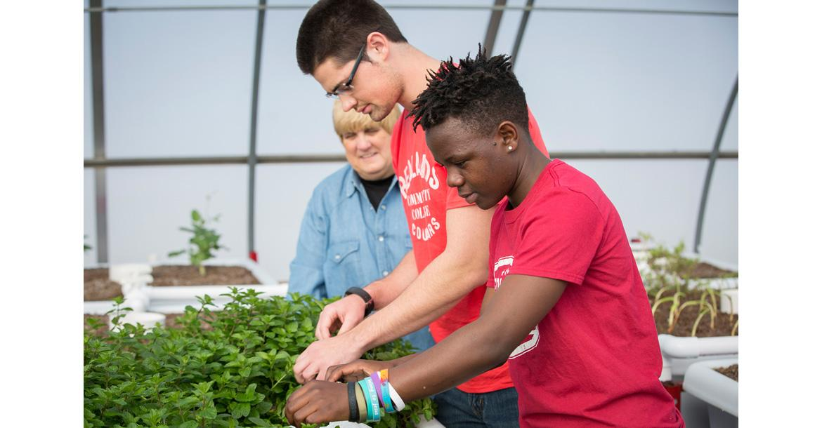 Dr. Julie Flegal-Smallwood works with students in the aquaponics lab_slideshow